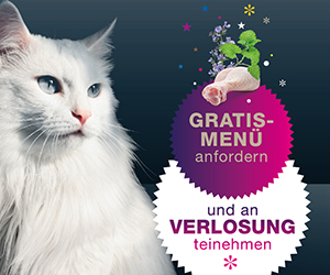 Dinner for Cats - Gratis